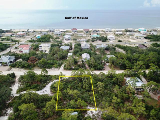 725 W Pine Ave, ST. GEORGE ISLAND, FL 32328 (MLS #302149) :: Berkshire Hathaway HomeServices Beach Properties of Florida