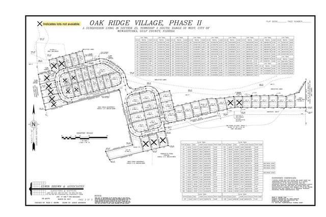 TBD Noah Cir, WEWAHITCHKA, FL 32465 (MLS #306666) :: The Naumann Group Real Estate, Coastal Office