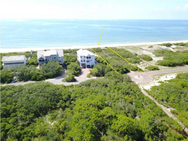1510 Gulf View Way, ST. GEORGE ISLAND, FL 32328 (MLS #258562) :: Coast Properties