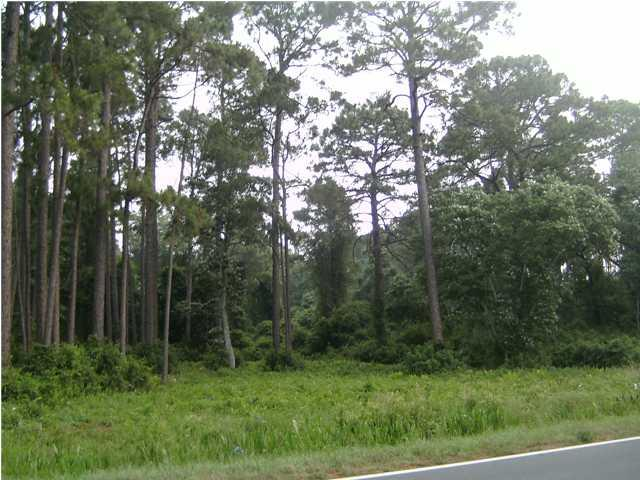 2971 Hwy 98, CARRABELLE, FL 32322 (MLS #243824) :: CENTURY 21 Coast Properties