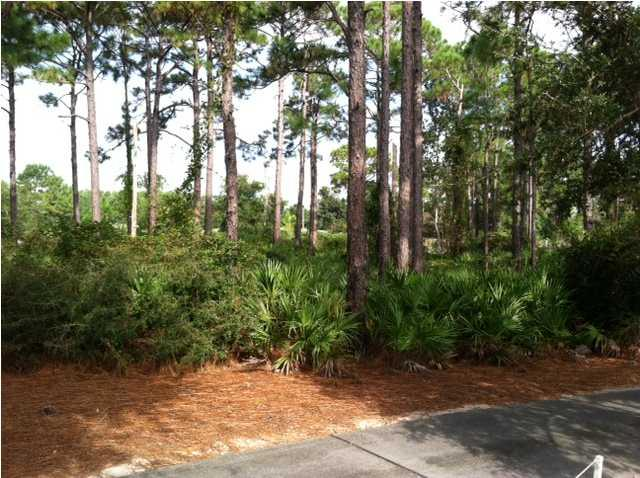 264 Royal Tern Way, CARRABELLE, FL 32322 (MLS #250378) :: Berkshire Hathaway HomeServices Beach Properties of Florida