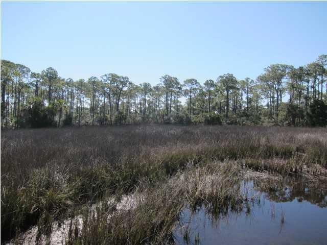 1839 Bayview Dr, ST. GEORGE ISLAND, FL 32328 (MLS #256701) :: Coast Properties