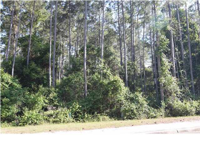 166 Royal Tern Way, CARRABELLE, FL 32323 (MLS #256738) :: Berkshire Hathaway HomeServices Beach Properties of Florida