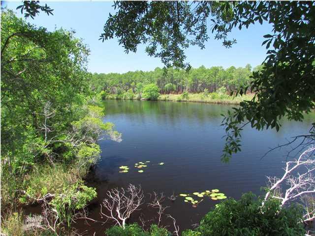 1960 River Plantation Rd, CARRABELLE, FL 32322 (MLS #257635) :: Coast Properties