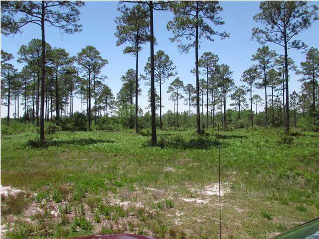 2035 River Plantation Rd, CARRABELLE, FL 32322 (MLS #257638) :: Coast Properties