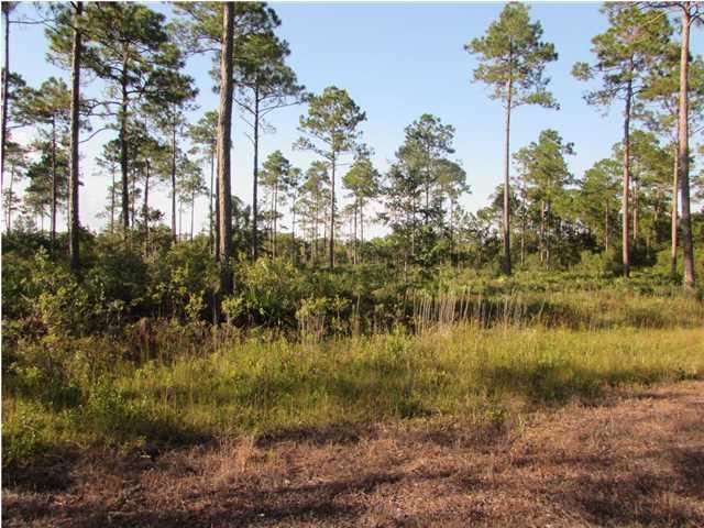 2047 River Plantation Rd, CARRABELLE, FL 32322 (MLS #257639) :: Coast Properties