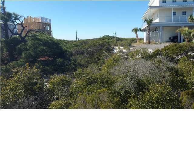 180 Gulf Hibiscus Dr - Photo 1