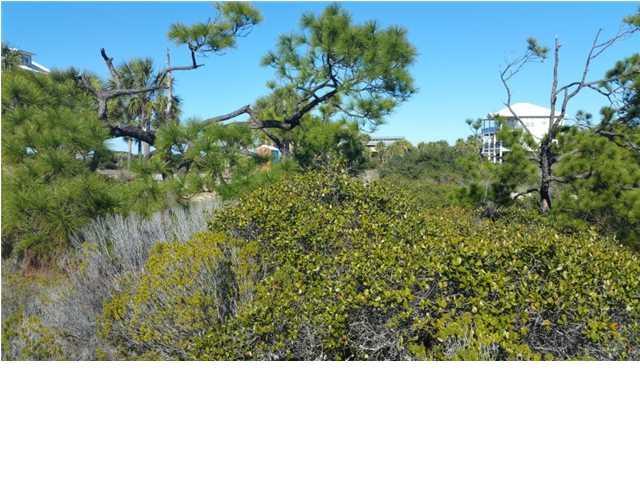 115 Gulf Hibiscus Dr, CAPE SAN BLAS, FL 32456 (MLS #258693) :: Coastal Realty Group