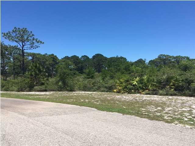 239 Cross Creek Ct, EASTPOINT, FL 32328 (MLS #259495) :: Coast Properties