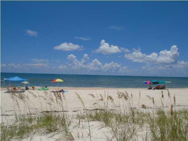 1644 East Gulf Beach Dr, ST. GEORGE ISLAND, FL 32328 (MLS #259706) :: Coast Properties
