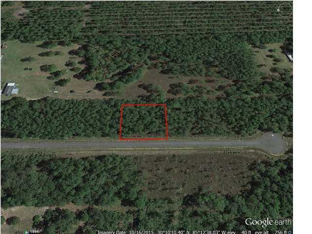 9 Jazzy Lane, WEWAHITCHKA, FL 32465 (MLS #259940) :: Coast Properties