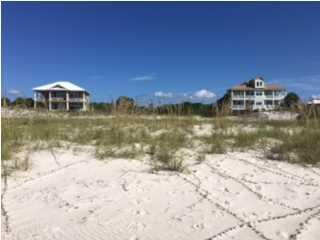 1730 East Gulf Beach Dr, ST. GEORGE ISLAND, FL 32328 (MLS #260180) :: Coast Properties