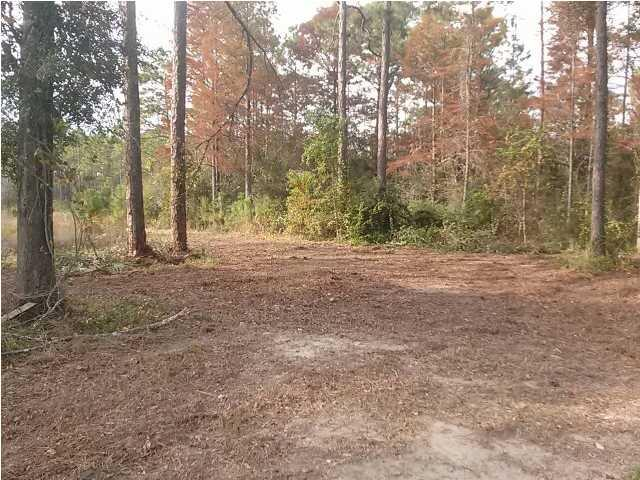 0 Gray Ave, CARRABELLE, FL 32322 (MLS #260556) :: Coast Properties