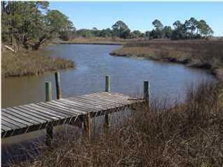 2978 Pristine Dr, CARRABELLE, FL 32322 (MLS #260638) :: Coast Properties