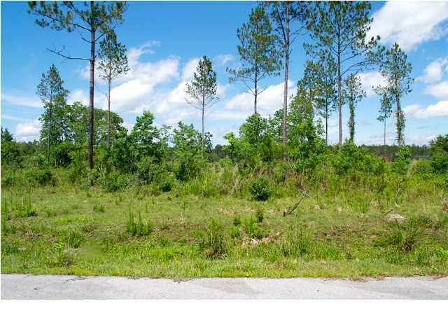 1112 Goldenrod Ln, WEWAHITCHKA, FL 32456 (MLS #260716) :: Coast Properties