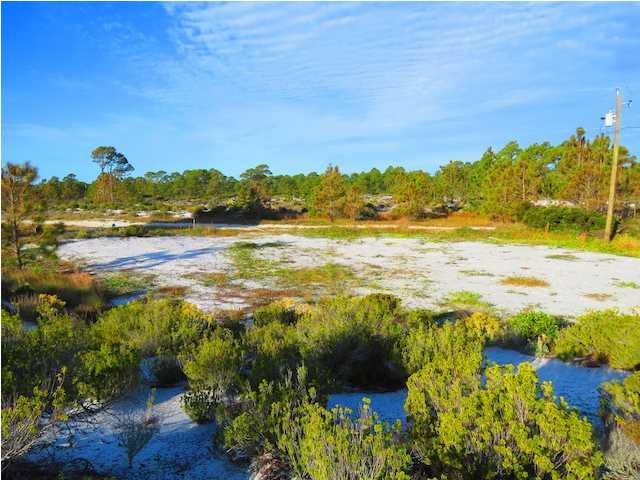 262 Gulf Shore Dr, CARRABELLE, FL 32322 (MLS #260740) :: Berkshire Hathaway HomeServices Beach Properties of Florida