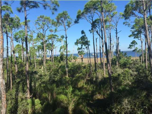1823 Bayview Dr, ST. GEORGE ISLAND, FL 32328 (MLS #260757) :: Coast Properties