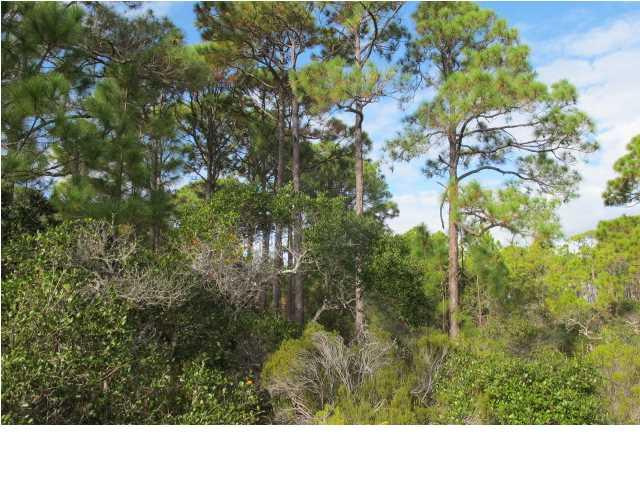 1448 Blueberry Ln, ST. GEORGE ISLAND, FL 32328 (MLS #260860) :: Coast Properties