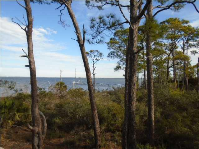 1767 East Gulf Beach Dr, ST. GEORGE ISLAND, FL 32328 (MLS #261007) :: Coast Properties