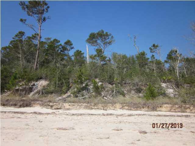 3006 Pristine Dr, CARRABELLE, FL 32322 (MLS #261083) :: Coast Properties