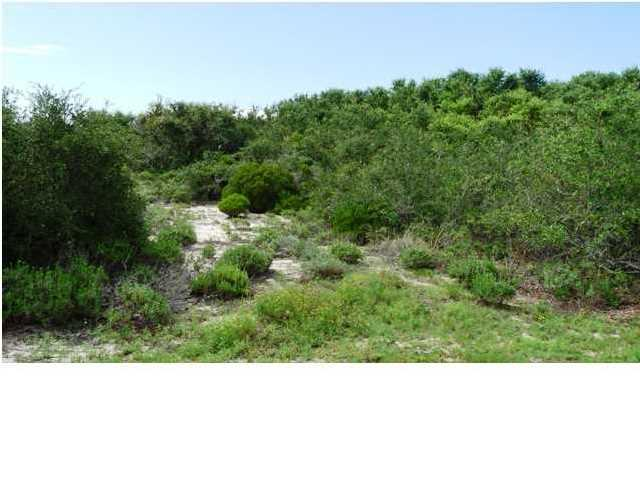 1056 West Gulf Beach Dr, ST. GEORGE ISLAND, FL 32328 (MLS #261212) :: Coast Properties