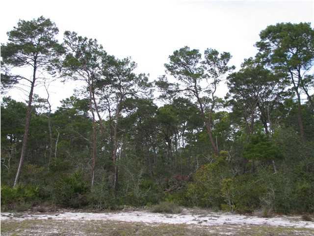 158 Longleaf Dr, EASTPOINT, FL 32328 (MLS #261629) :: Coast Properties