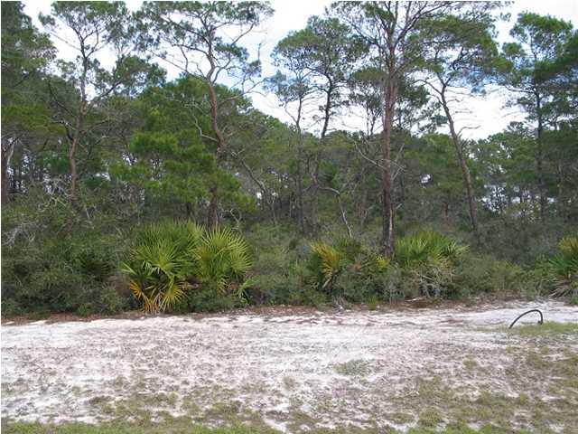 125 Lakes On The Bluff Dr, EASTPOINT, FL 32328 (MLS #261659) :: Coast Properties