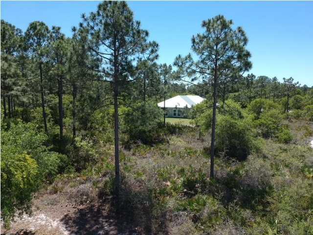 0 Nesting Way, PORT ST. JOE, FL 32456 (MLS #261780) :: Coast Properties