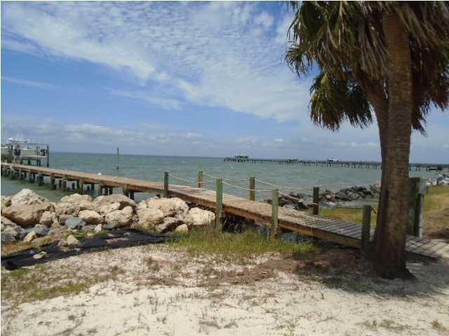 2229 Bayside Dr., ST. GEORGE ISLAND, FL 32328 (MLS #261816) :: Coast Properties