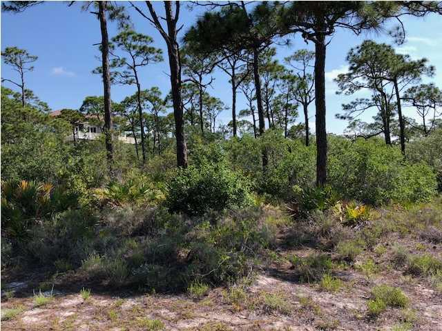 1608 Hawthorne Ln, ST. GEORGE ISLAND, FL 32328 (MLS #262084) :: Berkshire Hathaway HomeServices Beach Properties of Florida