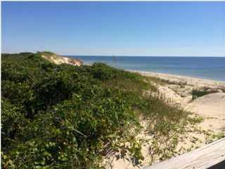 1416 Dogwood Dr, ST. GEORGE ISLAND, FL 32328 (MLS #262102) :: Coast Properties