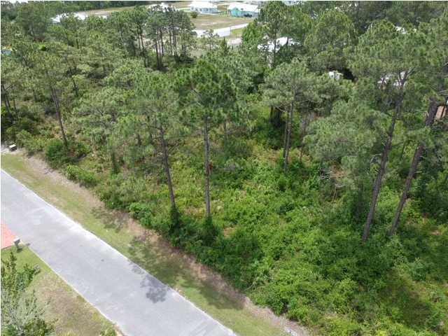 305 Bailey Ln, MEXICO BEACH, FL 32456 (MLS #262121) :: Coast Properties