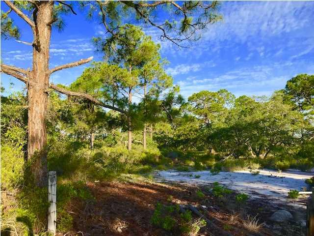 329 Lubbers Ln, CARRABELLE, FL 32322 (MLS #262283) :: Berkshire Hathaway HomeServices Beach Properties of Florida