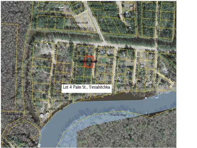 4 Palm St, WEWAHITCHKA, FL 32465 (MLS #262324) :: Berkshire Hathaway HomeServices Beach Properties of Florida