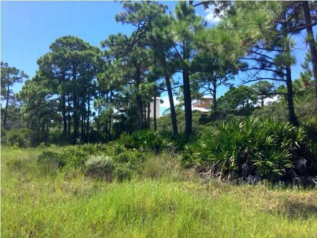 17 Mccosh Mill Rd, CAPE SAN BLAS, FL 32456 (MLS #262504) :: Coast Properties