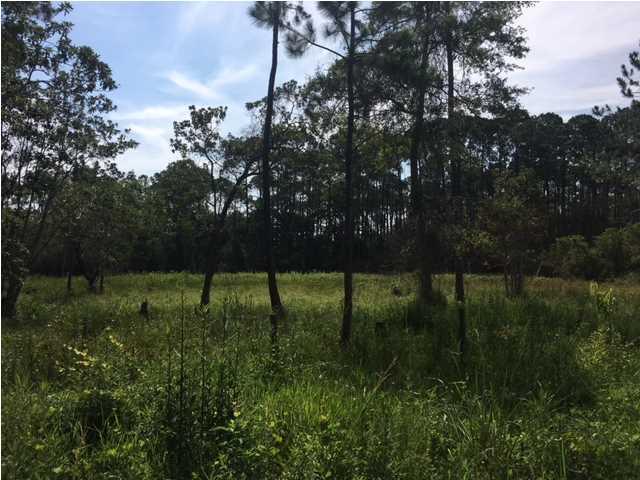 194 North Bay Shore Dr, EASTPOINT, FL 32328 (MLS #262736) :: CENTURY 21 Coast Properties