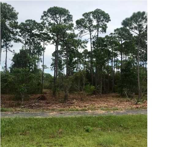 187 Ridgecrest Parkway, EASTPOINT, FL 32328 (MLS #262862) :: Berkshire Hathaway HomeServices Beach Properties of Florida