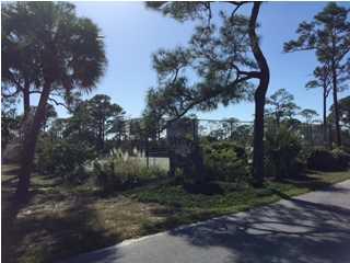 1435 Pelican Ct, ST. GEORGE ISLAND, FL 32328 (MLS #300140) :: Coastal Realty Group