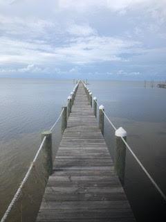 2047 Turpentine Trail, ST. GEORGE ISLAND, FL 32328 (MLS #300181) :: Coastal Realty Group