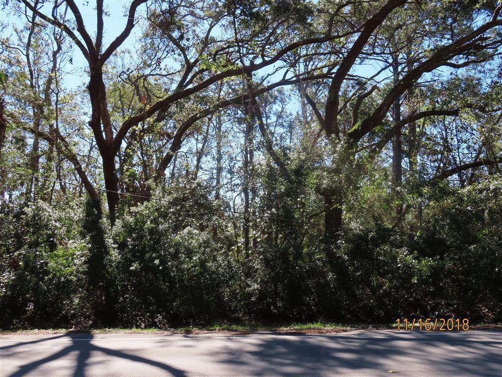 480 Bluff Rd - Photo 1