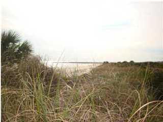 2336 Schooner Landing, ST. GEORGE ISLAND, FL 32328 (MLS #300231) :: Coastal Realty Group