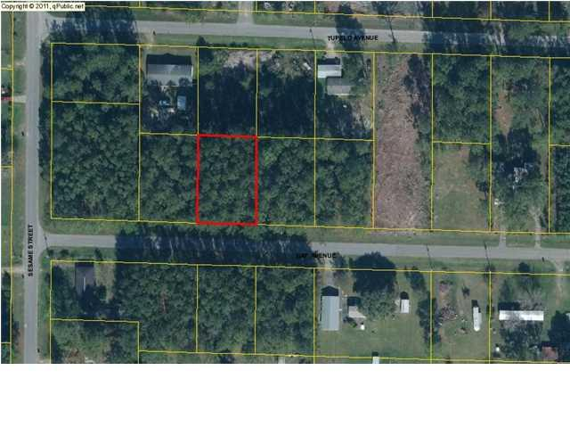 31 Florida Ave, WEWAHITCHKA, FL 32465 (MLS #300640) :: Coastal Realty Group