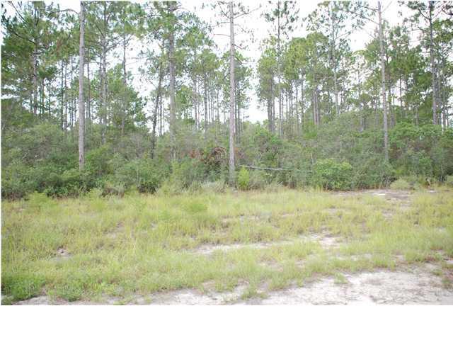190 Mojita Dr, CARRABELLE, FL 32322 (MLS #300662) :: CENTURY 21 Coast Properties
