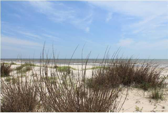 650 Cape San Blas Rd, CAPE SAN BLAS, FL 32456 (MLS #300729) :: CENTURY 21 Coast Properties