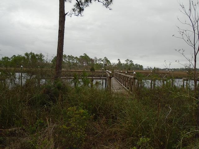 513 Shelly's Loop Rd, CARRABELLE, FL 32322 (MLS #300952) :: Coastal Realty Group