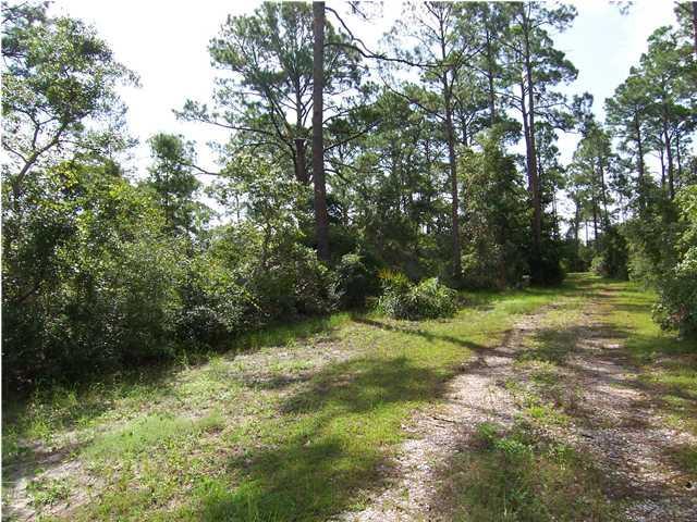 2976 Pristine Dr, CARRABELLE, FL 32322 (MLS #301000) :: The Naumann Group Real Estate, Coastal Office