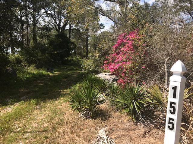 155 N Bay Shore Dr, EASTPOINT, FL 32328 (MLS #301294) :: Coastal Realty Group