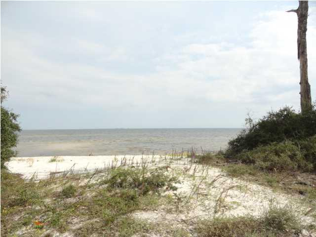 2698 Hwy 98 W, CARRABELLE, FL 32322 (MLS #301319) :: Coastal Realty Group