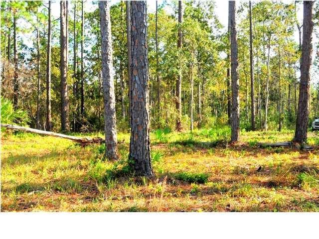 7 Jay Jay Way, CARRABELLE, FL 32322 (MLS #301366) :: CENTURY 21 Coast Properties