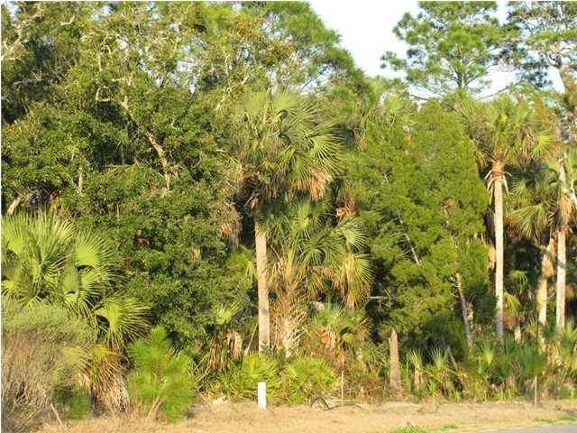 262 Sea Lavender Ln, PORT ST. JOE, FL 32456 (MLS #301670) :: Coastal Realty Group